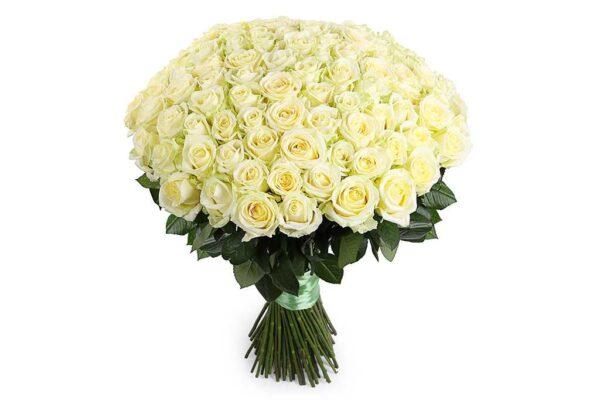 101 белая роза 65 см